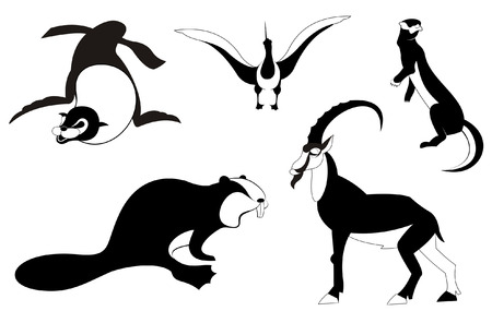 albatross: Vector original art animal silhouettes collection for design Illustration