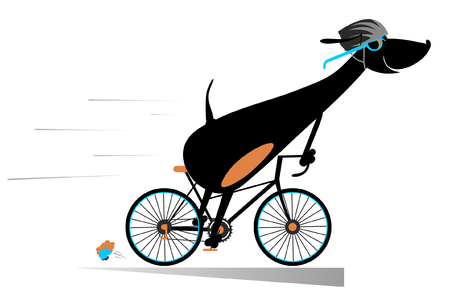 Cartoon dog rides a bike isolated. Smiling dog rides a bike and looks healthy and happy