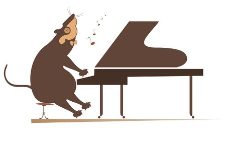 Pianist rat or mouse plays piano isolated illustration. Pianist rat or mouse plays piano isolated on white illustration