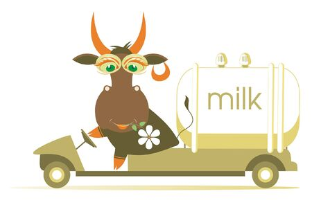Funny cow drives a milk tanker illustration. Cartoon comic cow with a flower in its mouth drives a milk tanker isolated on white