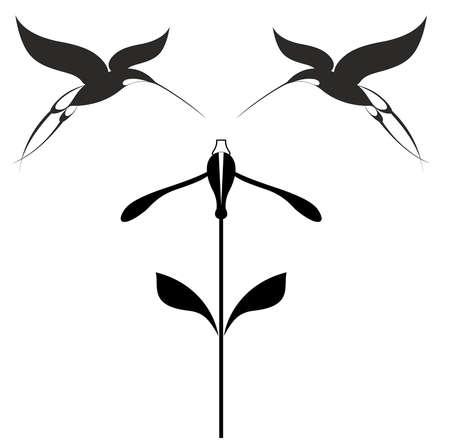 Birds and flower black on white illustration. Original decorative hummingbirds and flower illustration for design