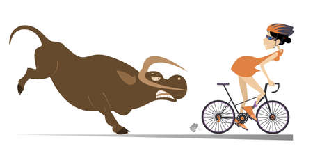 Angry bull and cyclist woman illustration. Frightened cyclist woman escapes from the angry bull isolated on white illustration