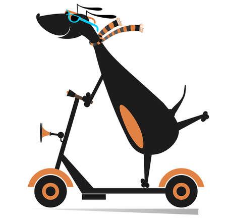 Cartoon dog rides on scooter isolated illustration.  Dachshund riding ecologically clean urban vehicle isolated on white Ilustração