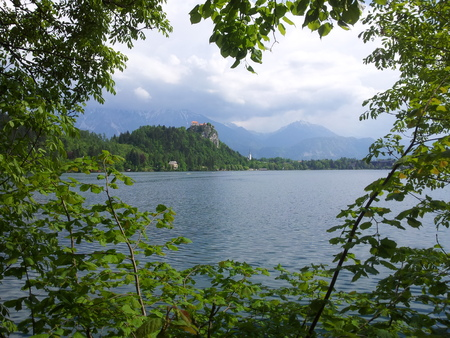 overseeing: Fortress overseeing lake Bled seen trough trees