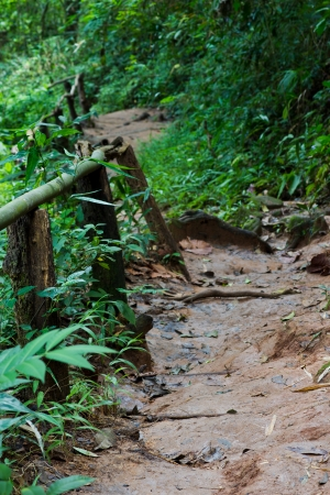 mud slide: Steep Path Leads Down from the High Waterfall