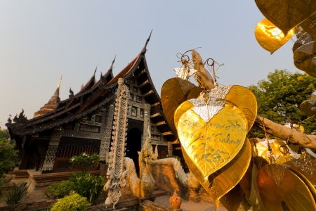 molee: Gold Pipal Leaf on the Wishing Bodhi Tree in Wat Lok Molee, Thailand. Stock Photo