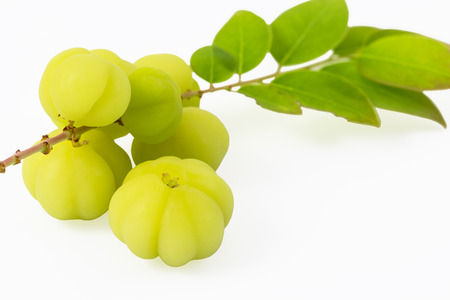 star path: Otaheite Gooseberry or Star Gooseberry on white background and clipping path