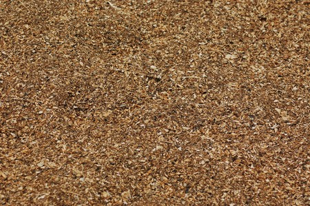 Havested seed texture Stock Photo