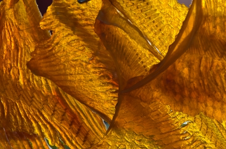 Dried sweet fish Stock Photo - 17811703