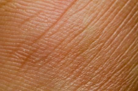 La textura de la piel humana