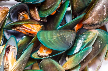 Asian green mussel texture Stock Photo