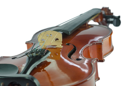 The violin bridge closeup isolated on white photo