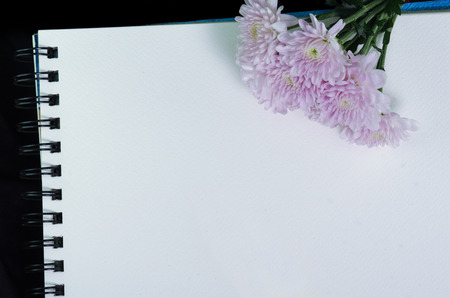 A white sketchbook and pink flower on black cloth photo