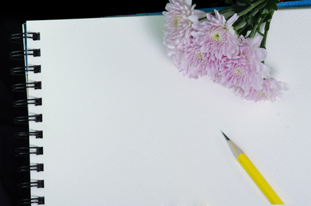 unlined: A white sketchbook and pink flower on black cloth