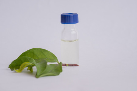 spectrometry: Sample vial and leaf isolated on white backgrond Stock Photo