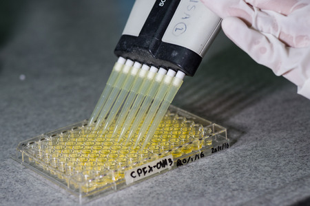 immunological: 96 well plate for immunological laboratory