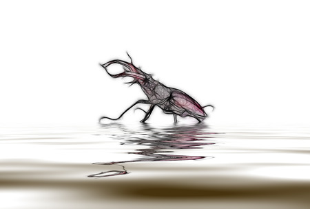 defensive: Abstraction as a rhinoceros beetle in defensive stance with reflection in water