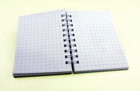 disclosed: General view of the disclosed notebook with blue sheets in a cell on a light yellow background Stock Photo