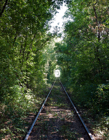 tunnel view: General view of the railway tunnel with a natural green trees in autumn