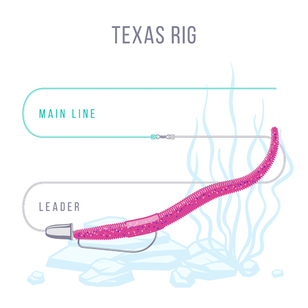 Texas rig fishing tackle setup scheme for catching bass, pike, perch, zander  and other predatory fish. Иллюстрация