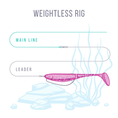 Weightless rig fishing tackle setup scheme for catching bass, pike, perch, zander  and other predatory fish.