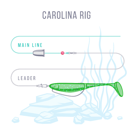 Carolina rig fishing tackle setup scheme for catching bass, pike, perch, zander  and other predatory fish.