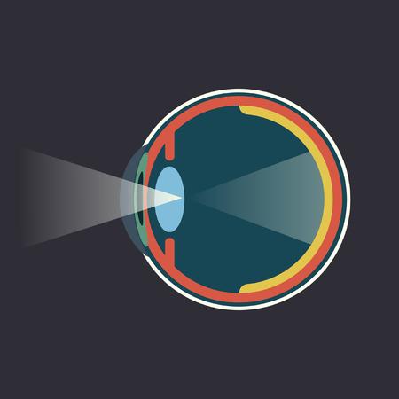 Human eye dissection infograpgic scheme design flat art Иллюстрация