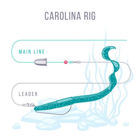 Carolina rig fishing tackle setup scheme for catching bass, pike, perch, zander  and other predatory fish.