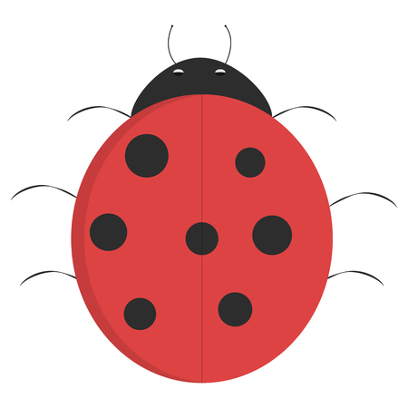 illustrated: Cartoon ladybug, illustrated ladybug isolated on white background