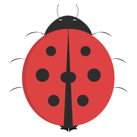 illustrated: Cartoon ladybug, illustrated ladybug isolated on white background before takeoff