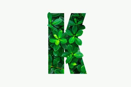 Nature concept Imagens
