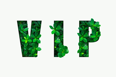 Word VIP from the green leaves