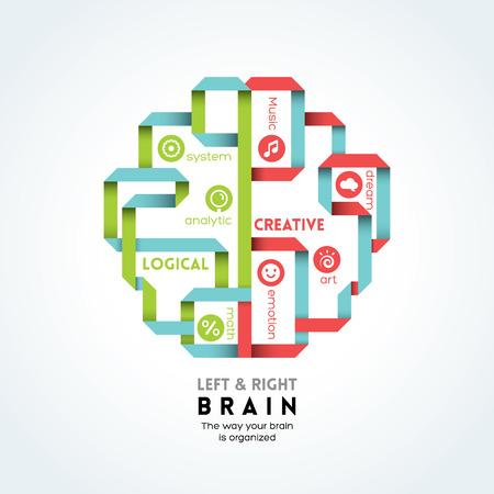 logica: izquierda y derecha ilustración vectorial función cerebral