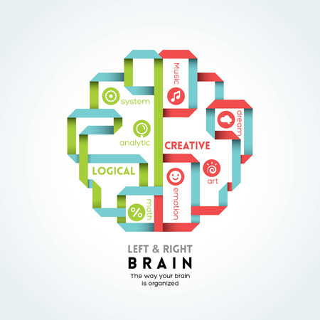 left and right brain function vector illustration Vector