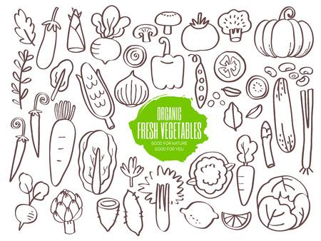 brocoli: Conjunto de garabatos dibujados a mano verduras Vectores