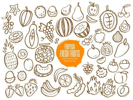 Set of hand drawn tropical fruit doodles Ilustracja