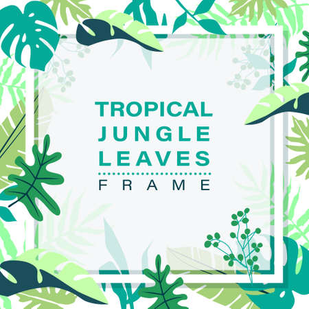 Frame of tropical jungle leaves on white background. vector illustration. Ilustrace