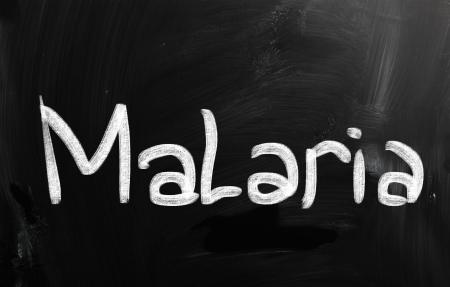 malaria: малярия Фото со стока