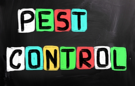 exterminate: Pest Control Concept Stock Photo