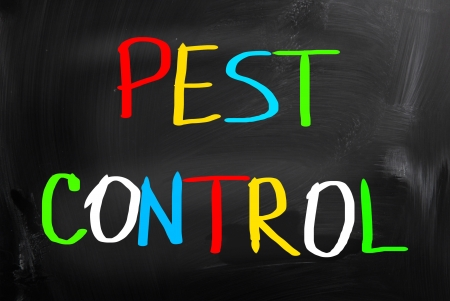 Pest Control Concept photo