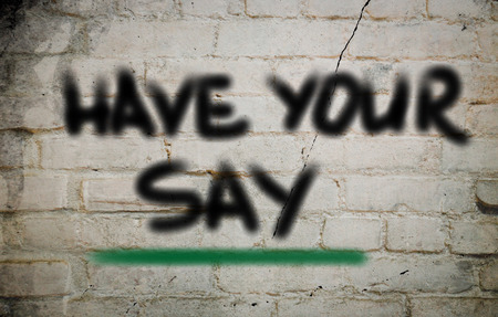 Have Your Say Concept photo