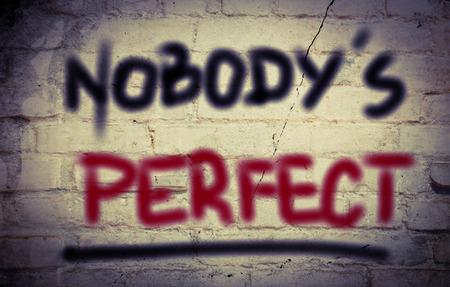 self conceit: Nobodys Perfect Concept
