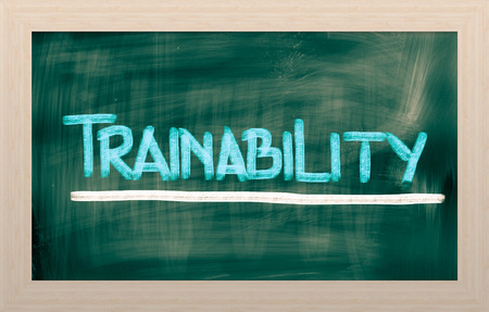Trainability Concept photo