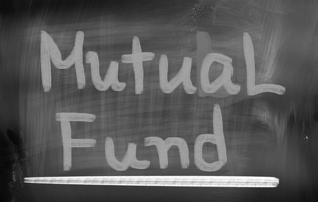 mutual fund: Mutual Fund Concept Stock Photo