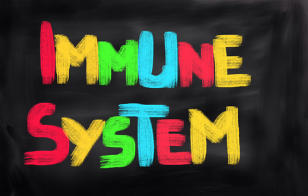 immune system: Immune System Concept Stock Photo