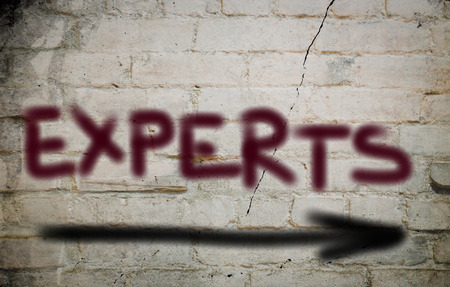experts: Experts Concept