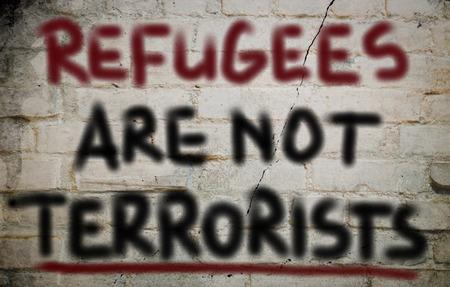 terror: No Terror Concept