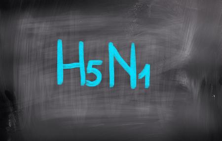 h5n1: H5N1 Concept