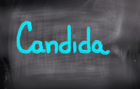 Candida Concept