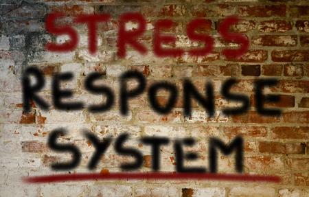 response: Stress Response System Concept